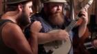 The Bearded: House Sparrow